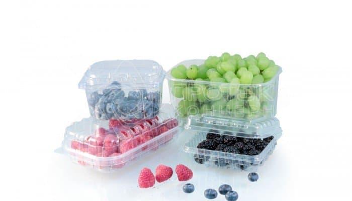 Контейнер для мелких ягод и фруктов ПР-РКФ-125